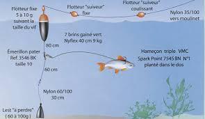 Les rapports sur la pêche sur beloyarskom le réservoir deau
